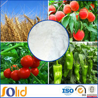 water soluble fertilzer supplier