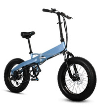 "electric cargo bicycle/folding electric bike with 20""*4.0 inch chaoyang trye"