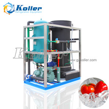 Koller 5 tons tube ice machine with stable capacity