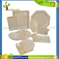Disposable Biodegradable Compostable Wood Food Fruit