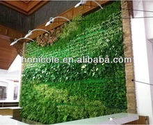 Green wall interior decoration soil