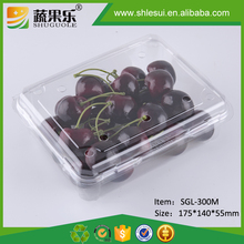 300g Disposable Plastic Cherry Packing Box with Top and Bottom Vent Hole