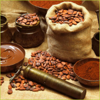 Original Factory Quality Bulk Cocoa Beans For Sale