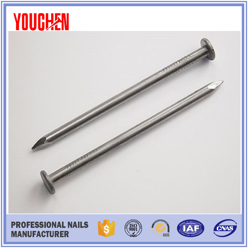 Factory Direct Selling Polished Common Round Wire Nails Iron Nails