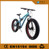 chopper easy rider electric bike fat rim with hole
