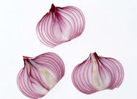 Free sample of Onion Extract 1% Quercetin