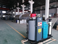Best Price Oil Fired Steam Boiler for Sale