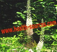 2.5%% Triterpene glycosides from Black Cohosh Extract