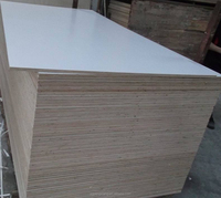 High Glossy Decorative High Pressure Laminates / HPL plywood