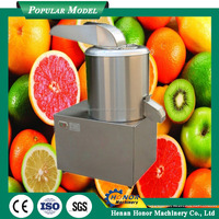 Stainless Steel Ginger Mashing Machine Fruit And Vegetable Paste Making Machine