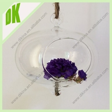 "Latest hot selling 4"" clear glass hanging decor with Dried Myosotis sylvatica flowers in it glass globe air plant terrarium"