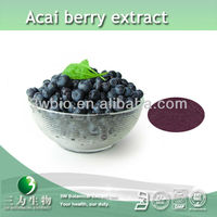 high quality Acai berry extract powder 5:1, 10:1, 20:1