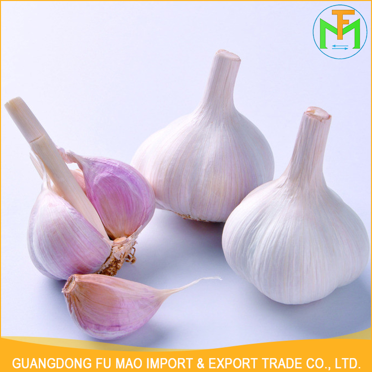 Best Price Big Size 6.0Cm Shandong Natural Fresh New Crops High Quality Normal White Garlic