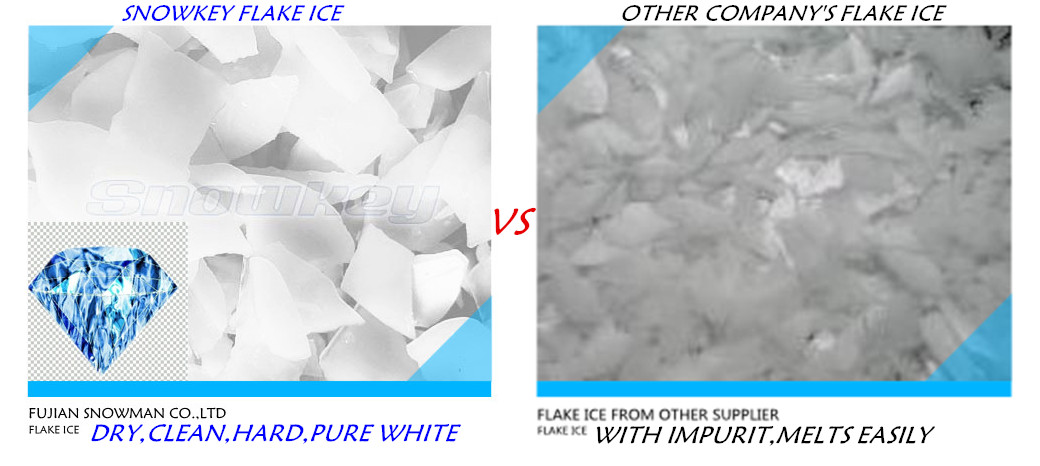 Good ice maker Snowkey flake ice machine price