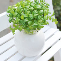 DIY potted accessories simulation bean sprouts artificial plastic plants