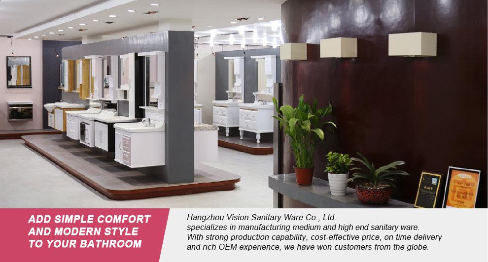 Hangzhou Vision Sanitary Ware Co., Ltd. - Bathroom vanity