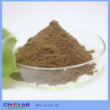 China Factory Supply good price Radix Polygoni Multiflori Extract