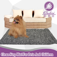2015 Clean Step Mat For Pet For Adult New Product