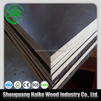 China pine core film faced shutter plywood 18mm MR glue
