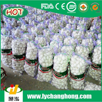 2015 New crop 20kg/mesh bag packing garlic