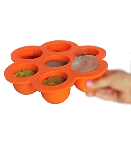 Silicone Food Storage Container and ice mold, baby's food storage.