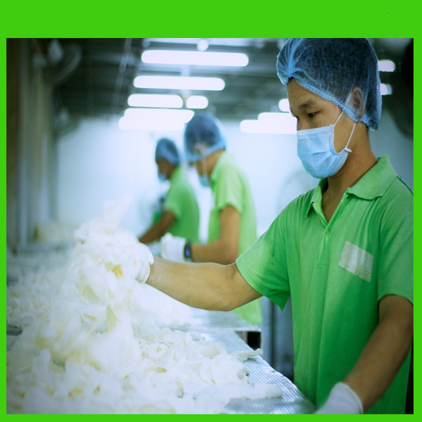New Product High Quality Disposable Hand Care Safety Latex Examination Gloves Malaysia