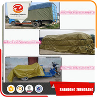 waterproof PE tarpaulin,tent material, outdoor plastic cover