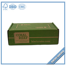 Customized Rectangle Printed Corrugated Kiwi Fruit Carton Box