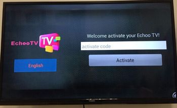 Best Selling Free Shipping Tiger IPTV Echo IPTV Subscription Account Server