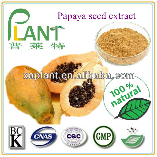 Best price Papaya seed extract for sale