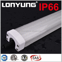 submersible led light 12v waterproof ip68 TRI-PROOF TUBE ETL TUV DLC SAA 20w 30W 40W 50W 60W 80W 100W 120W 1-8ft 30-240cm
