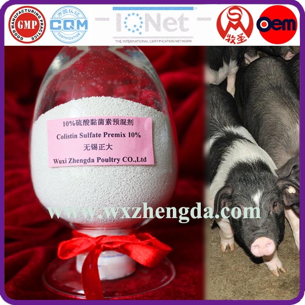 animal medicines poultry feed premix 10% Colistin water soluble