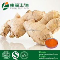 100% Pure natural herbal supplement ingredients curcumin ginger extract