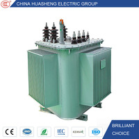 High Voltage S11 Three Phase Electrical 800KVA Distribution 25KV Power Transformer