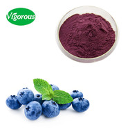 bilberry/ bilberry extract/ european bilberry extract
