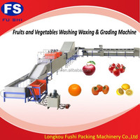 automatic fruit washing machine/vegetables and fruits processing machine