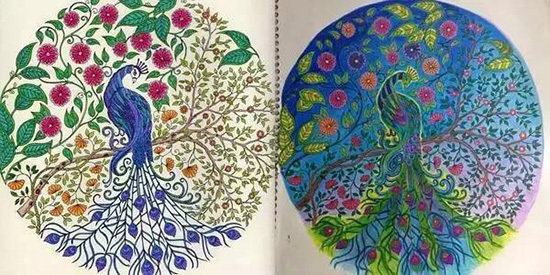 Secret Garden Coloring Book Art 146 Best Colour Me Creative