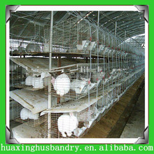 professional automatic farm used rabbit cages for sale