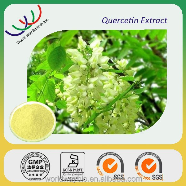 Free samples quercetin dihydrate, quercetin dihydrate extract powder,100% pure quercetin