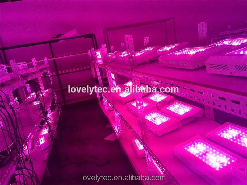 Hot selling led grow panel lamp with low price