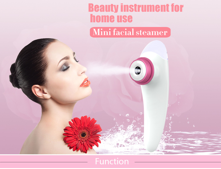 Hot selling Mini Facial steamer moisturizing/reparing/whitening skin OEM factory in China