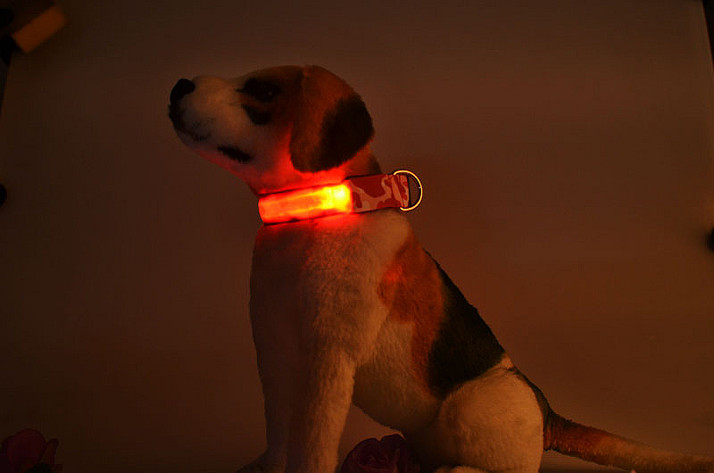 (Low Price) Pet Dogs Camouflage LED Collar Safety Night Lighted up Nylon LED Pet Collar