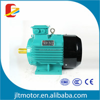 0.75KW 2825RPM Three Phase AC Induction Motor Squiry Cage Cast Iron Body