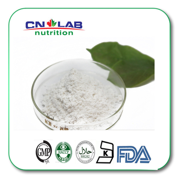 Natural Stevia extract powder 60% stevioside stevia in malaysia