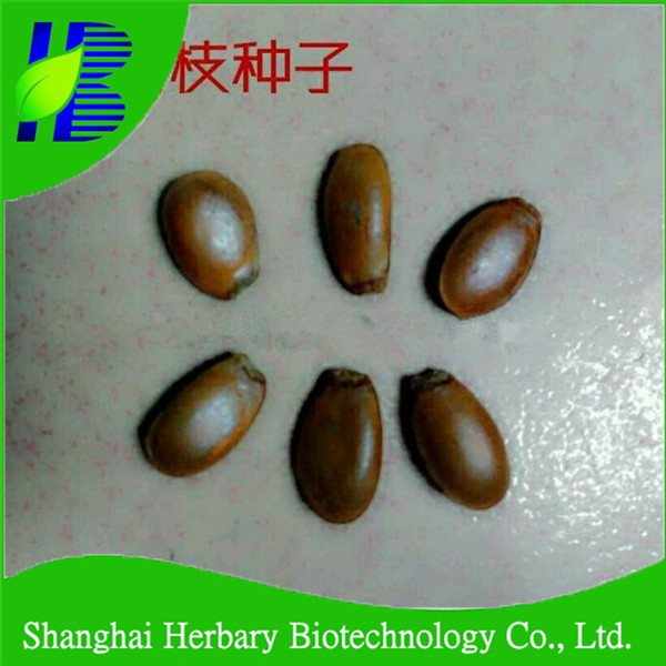 Shanghai Herbary Bio Supply Graviola Seed For Planting