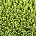 Super Quality 35mm Artificial Grass Landscaping Prices