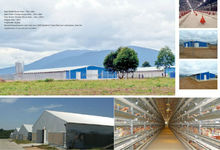 Chicken broiler farm house broiler poultry shed design