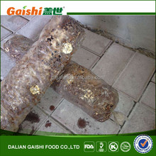 2014 best shiitake mushroom logs for sale