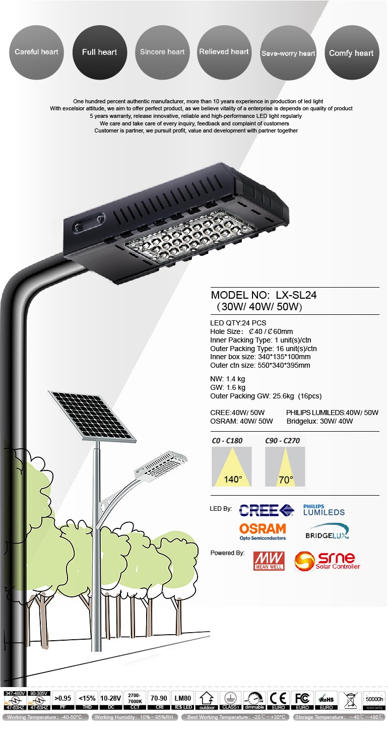 Elegance Series Street light 30W high class design