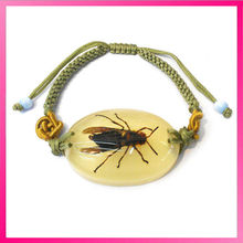 fashion natural insects amber jewelry